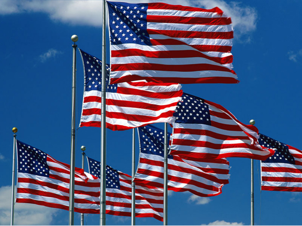 US-flag-purchase-2